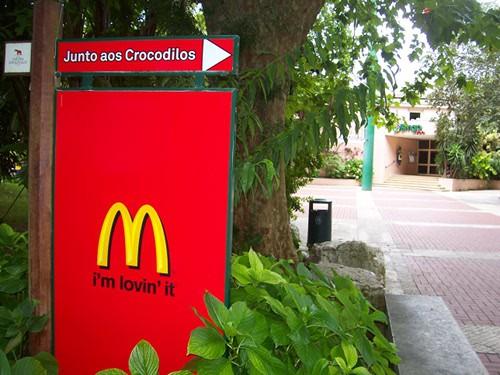 Vai ao McDonald's? CUIDADO COM OS CROCODILOS!