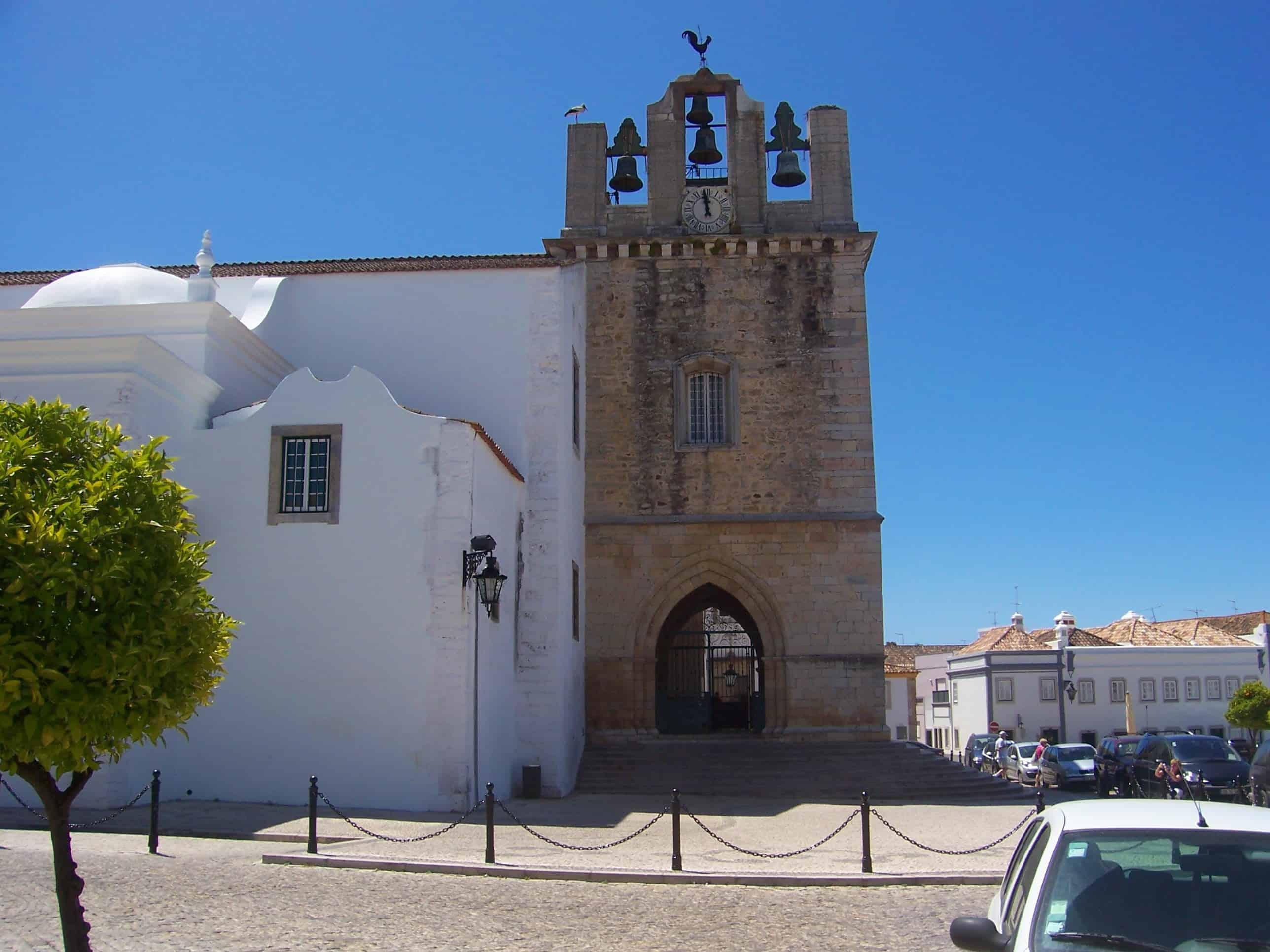 As belíssimas cegonhas em Portugal