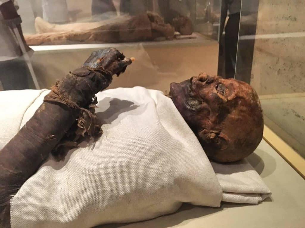 Múmia na Sala das Múmias Reais.