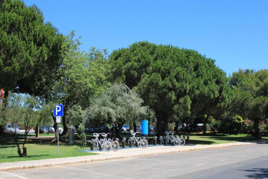 Rua arborizada e bicicletas em Vilamoura