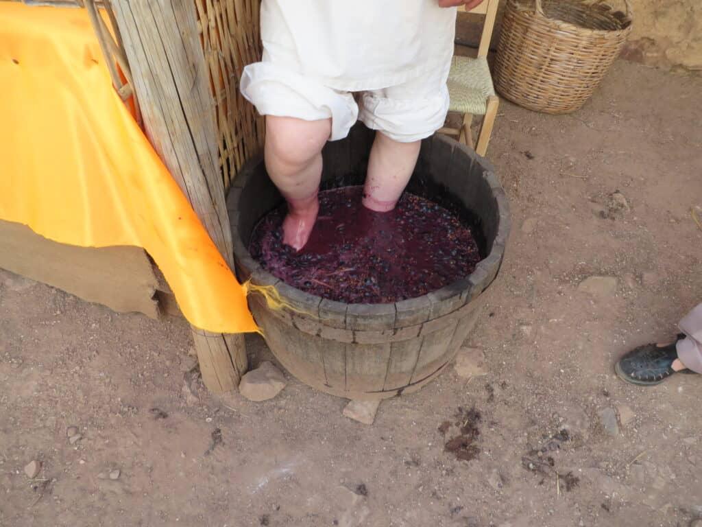 Fazendo vinho com os pés ao esmagar as uvas
