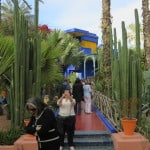 Jardim Majorelle, em Marrakech — e sua ligação com o estilista Yves Saint Laurent