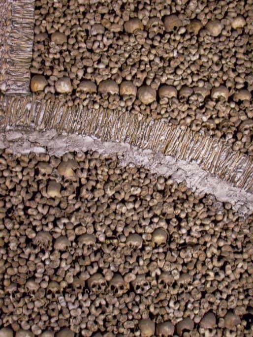 Ossos e ornamento em uma parede