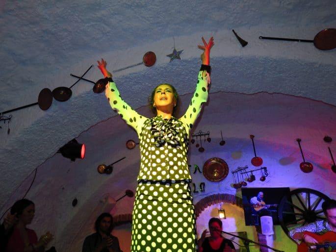 Show de flamenco em Granada: Venta El Gallo