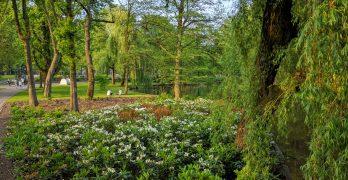 Oosterpark: um belíssimo parque em Amsterdã. Não perca!